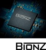 A33_bionz13