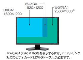 Wqxga01