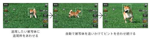 23y_tx300v_tsuibi_img_2